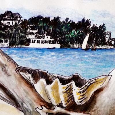 Shella from Diamond Beach (detail)